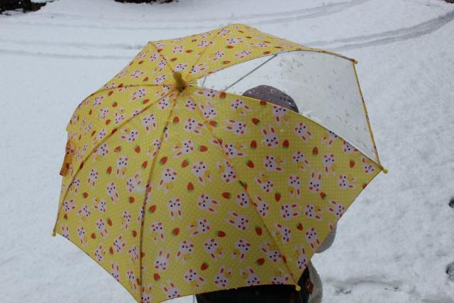子供用の傘を選ぶ時のサイズとポイント