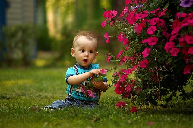 baby-1531068_640