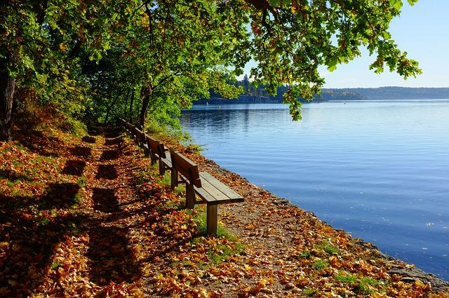 bench-1031398_640