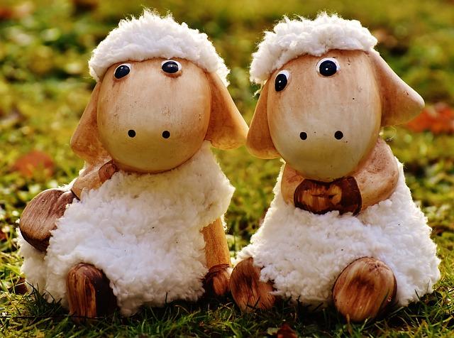 sheep-1906559_640